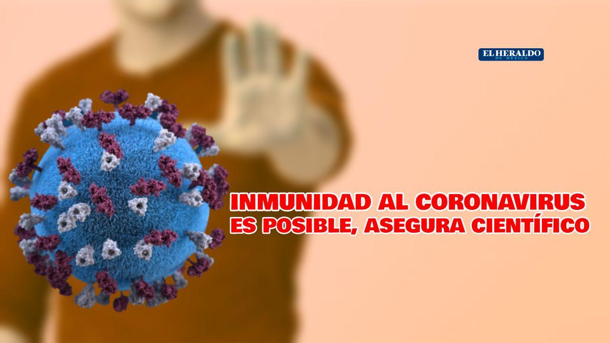Inmunidad coronavirus