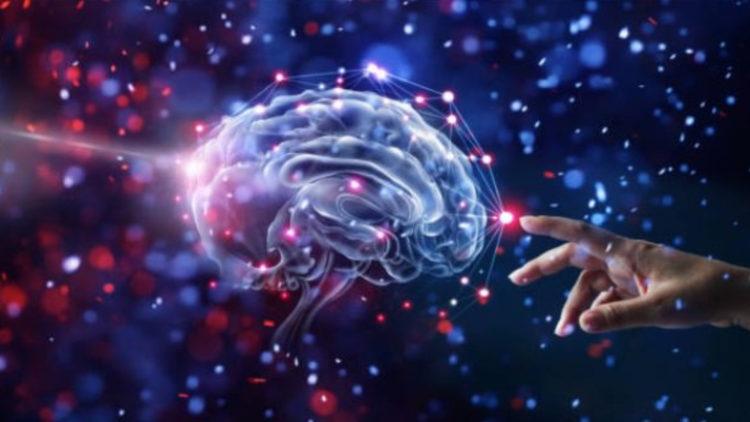 Infarto-Cerebral-camaleon