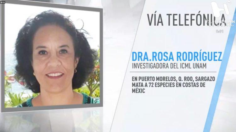 ROSA-RODRÍGUEZ