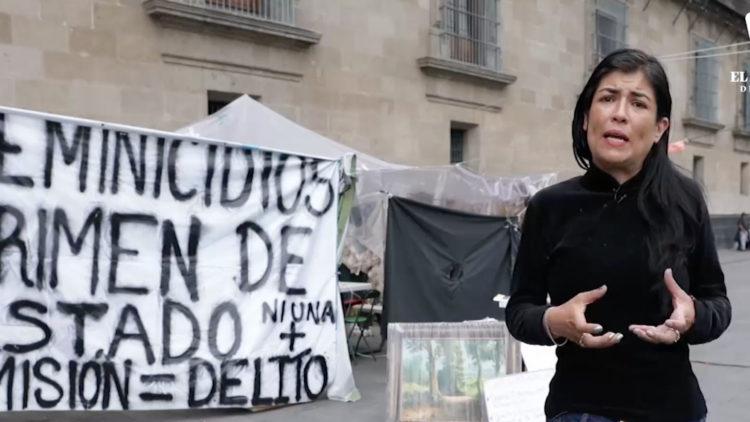 activista-en-palacio-nacional