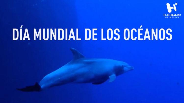 Día-Mundial-de-los-Océanos