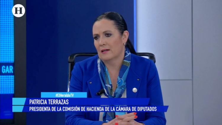 Patricia-Terrazas-Cámara-de-Diputados