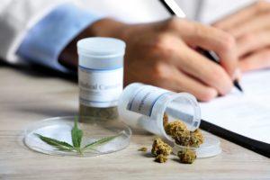 Usos y aplicaciones de la cannabis medicinal