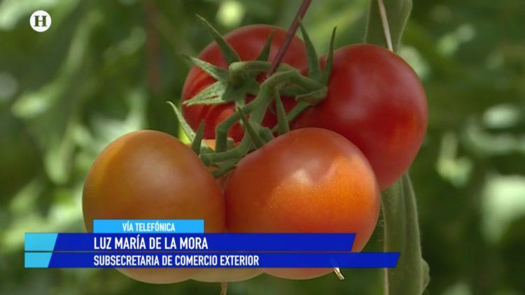 Luz María de la Mora EU aranceles jitomate El Heraldo TV