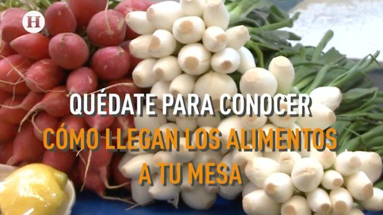 27-comida-app-ecubi-alimentos-desechos-generacion-h
