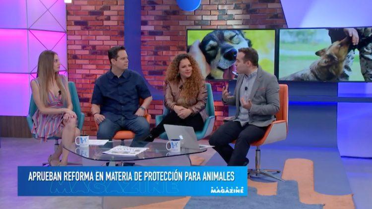 Maltrato animal senadora Rocío Abreu