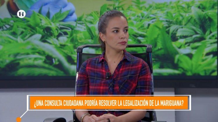 Lorena Beltrán Cannabis El Heraldo TV Noticias México