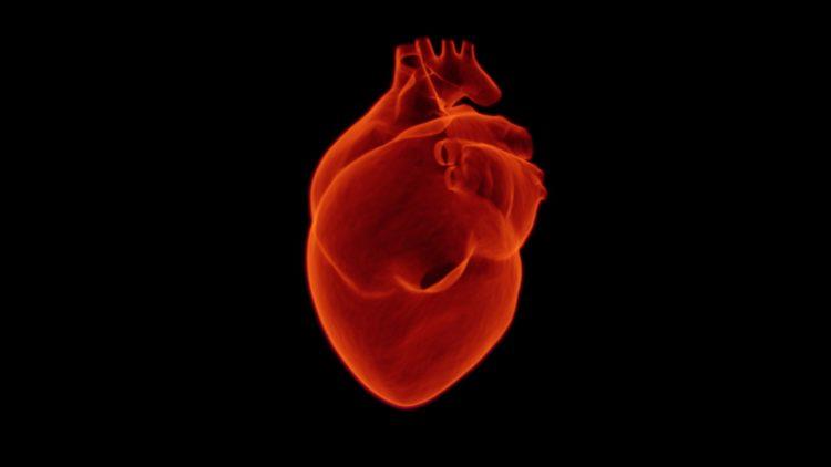 Corazón ok