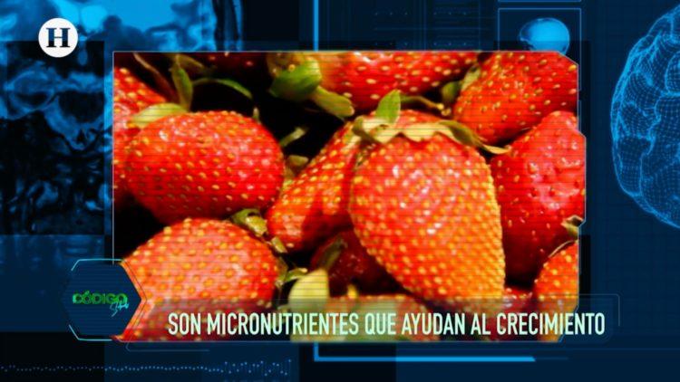 Vitaminas-Minerales-Alimentación-Salud-Nutrición-
