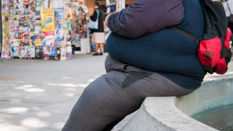 Obesidad Sobre Peso México El Heraldo TV