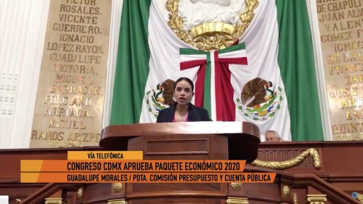 Seguridad es prioridad para el Paquete Económico 2020 Guadalupe Morales
