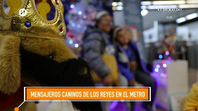 perritos rescatados cartas Reyes Magos El Heraldo TV