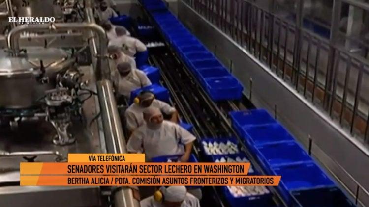 Leche-industria-mexicanos-condiciones-laborales-washington